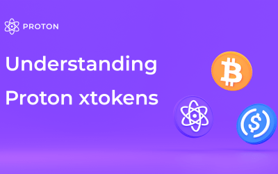 Understanding Proton-wrapped xtokens